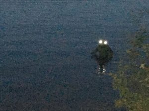 Photo of alleged Frogman